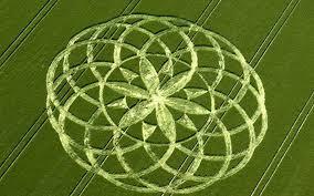 crop circle dengan pola unik dan tingkat kesulitan terbesar-13