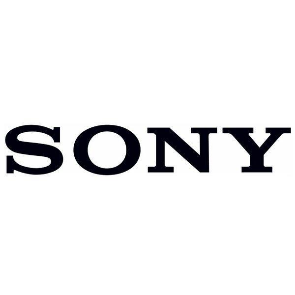 Lowongan Kerja 2013 Terbaru Februari Sony Indonesia