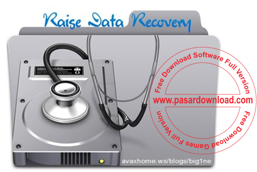 Download Raise Data Recovery for FAT and NTFS 5.14 Full Patch