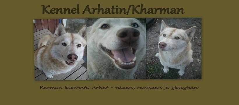 Arhatin/Kharman kennel