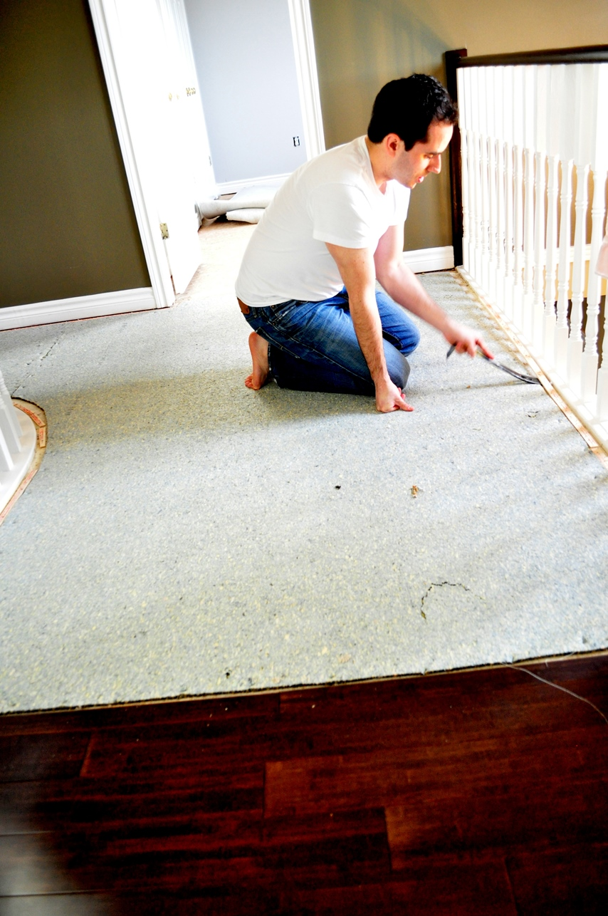 Living BeautifullyOne DIY Step At A Time Carpet Vs Hardwood