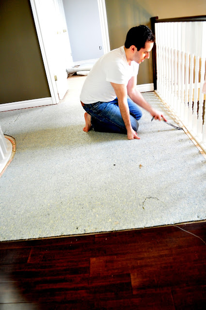 Living Beautifully...One (DIY) Step At A Time: Carpet v.s Hardwood