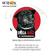 Diga Não à Leishmaniose x Pet Box Brasil