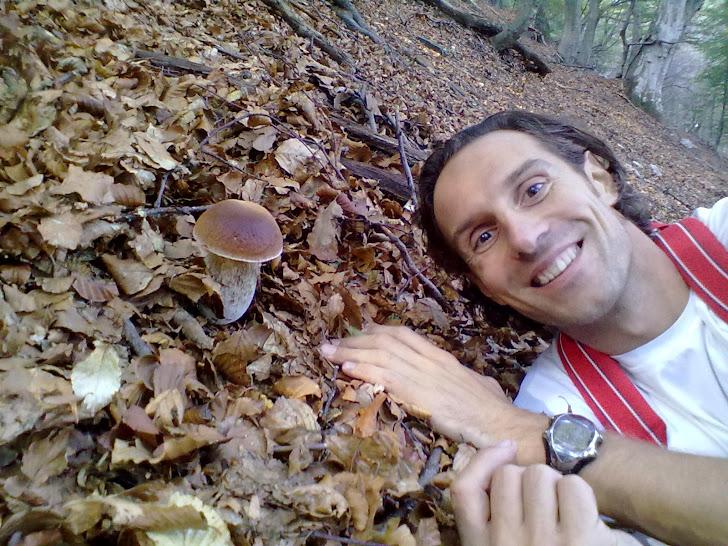 funghi di Manenti E. del 2011e2010