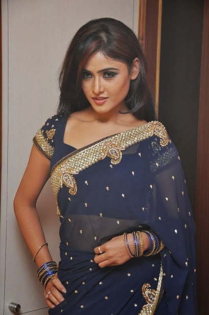 In Saree Telugu Film Gallery Wallpapers Cinema Actress Sony