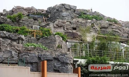 صيني يبني هضبة صخرية وفوقها فيلا على سطح عمارة
