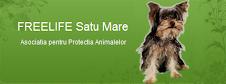 Free Life - Satu Mare