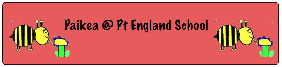 Paikea @ Pt England School