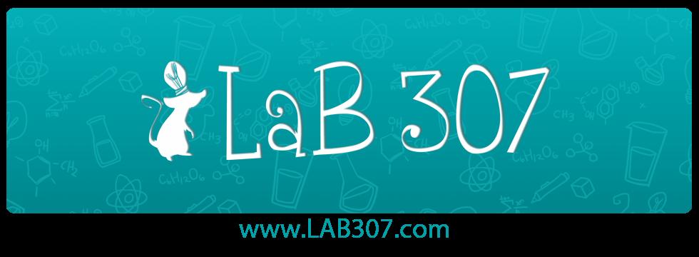 Estúdio Lab 307