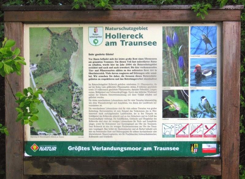 Naturschutzgebiet Hollereck am Traunsee