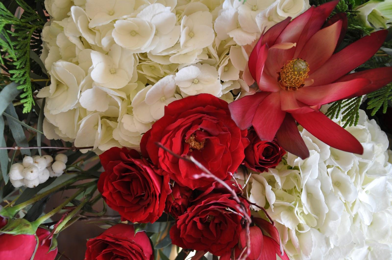 Tara mchugh flora winter flowers white hydrangea and red roses izmirmasajfo