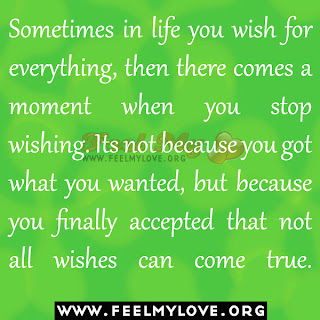Sometimes in life you wish for everything