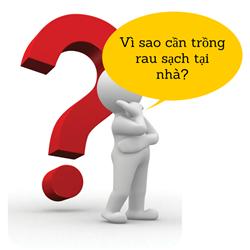 https://sites.google.com/site/tuvantrongrausach/vi-sao-can-trong-rau-sach-tai-nha