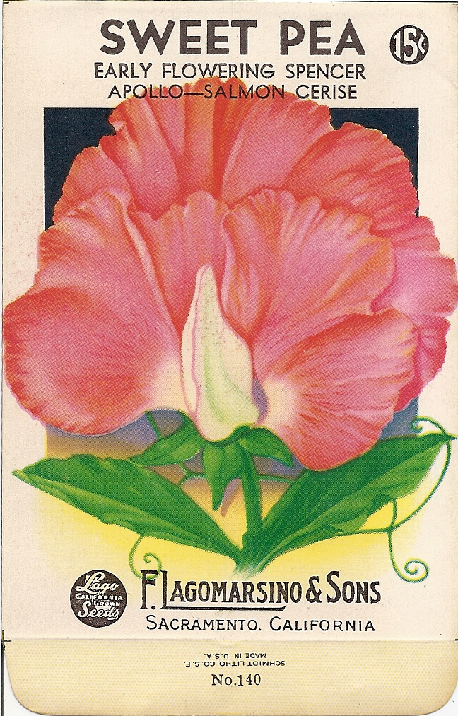 Today We Have This Beautiful Sweet Pea Packet The Front And Back Sidealong With 2 Others Poppys Stock On Our Free Printables Page For Your
