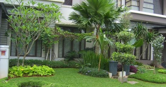 taman minimalis depan rumah ide dan dekorasi bentuk