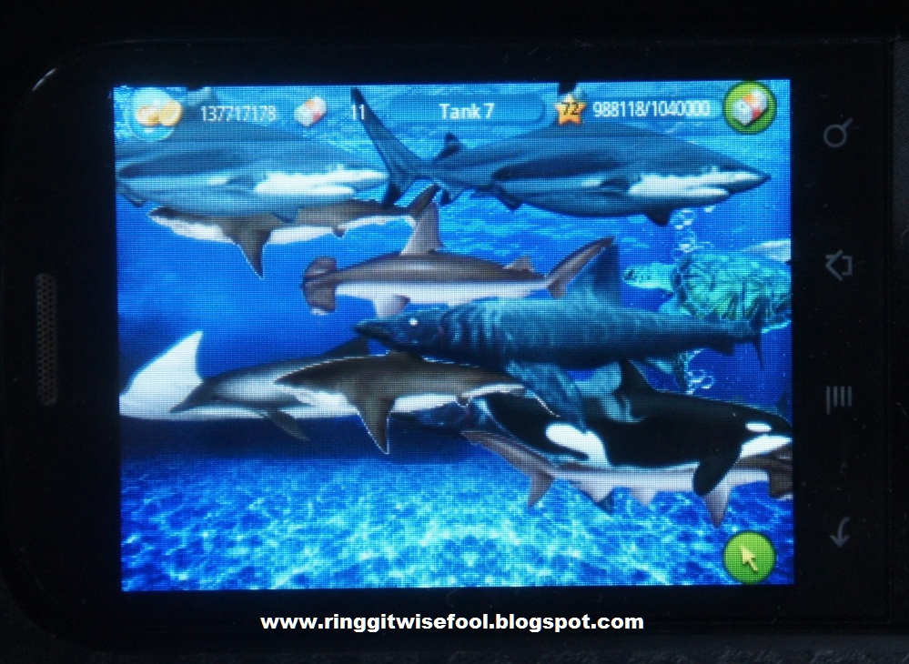 Tap fish sharks for Tap tap fish