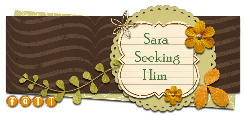 Sara Seeking Him