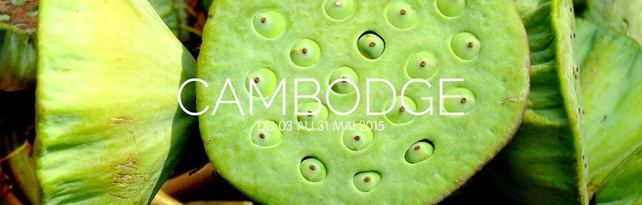http://andiamopepito.blogspot.com/search/label/Cambodge