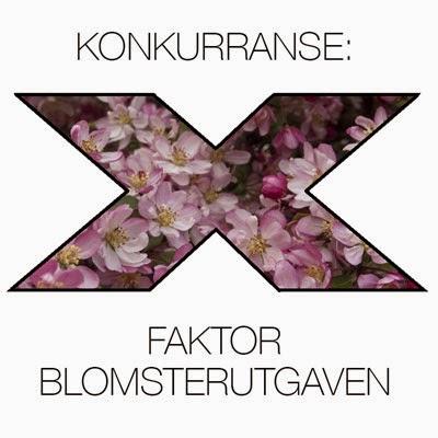 http://moseplassen.com/2015/03/rosa-blomster/#more-38378