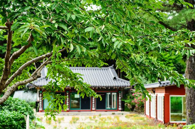 Temple Korea Pohang