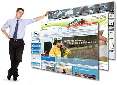 diseno profesional de paginas web para empresas: