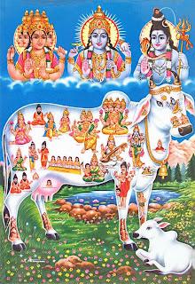 Uttarayana 2014