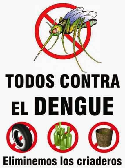 ¿Como prevenir el dengue?