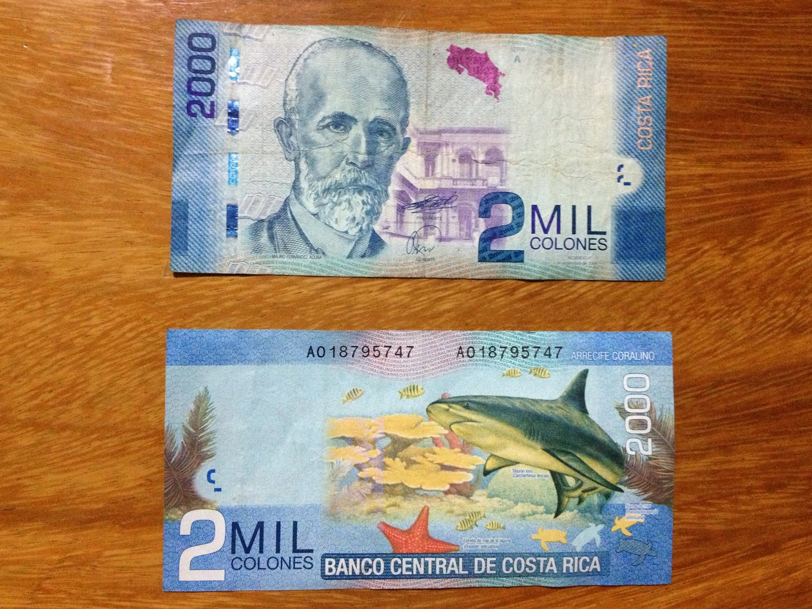 Vamos a costa rica grades 3 4 edition el dinero de costa rica the currency in costa rica is called the coln which is named for the famous explorer cristbal coln in english christopher columbus biocorpaavc Gallery