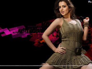 Amisha Patel 2011