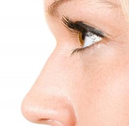 Fungsi Hidung Pada Manusia