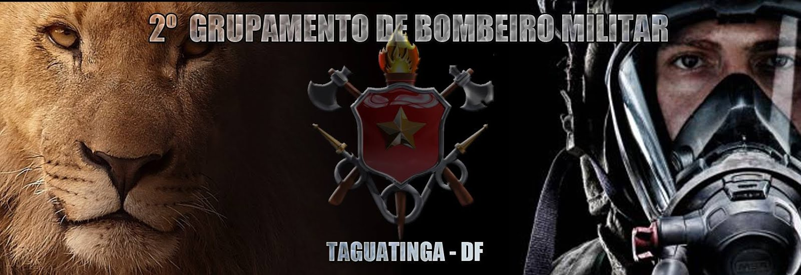 SIMBOLO DO BATALHÃO