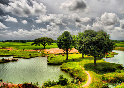 beauty of bangladesh The most wonderful division in bangladesh is chittagong a nice combination of hills, lake and sea makes the nature awesome a perfect place for visitors who wants to stay closely with nature safely.
