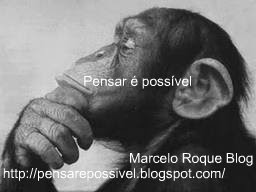 Marcelo Roque, Blog Novo