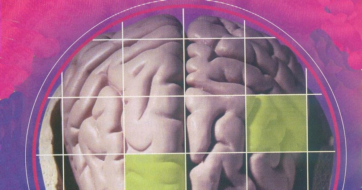 El khipu de Juan Yunpa: Neurociencia y aprendizaje.