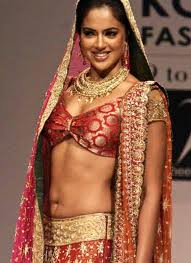 Sameera Reddy hot in saree Bollywood Actress-1