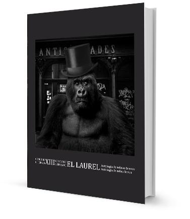 XIII concurso literario El Laurel. Accésit