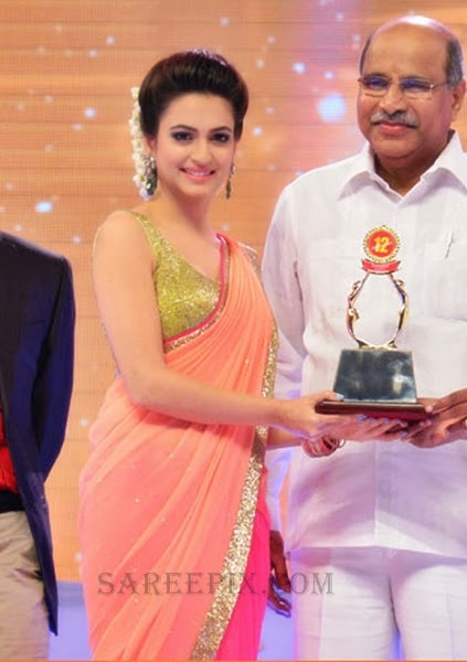Kriti-kharbanda-saree-receiving-award