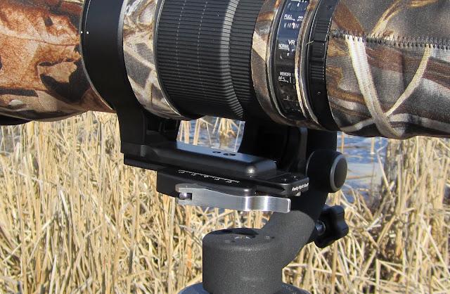 Nikon 600mm f/4 G VR. RRS PG-CC