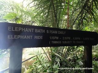 where to bring kids singapore