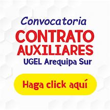 CONVOCATORIA CONTRATO AUXILIAR