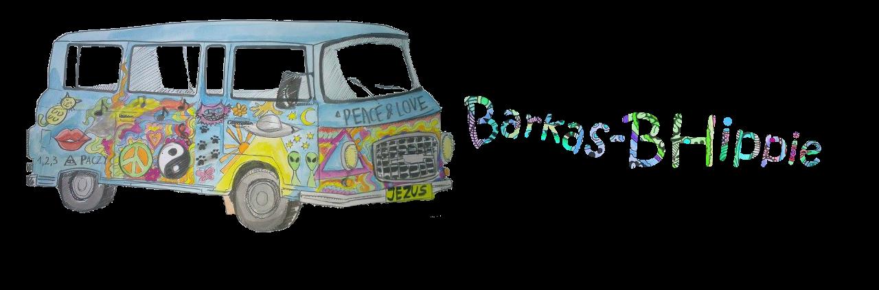 Barkas B-Hippie us