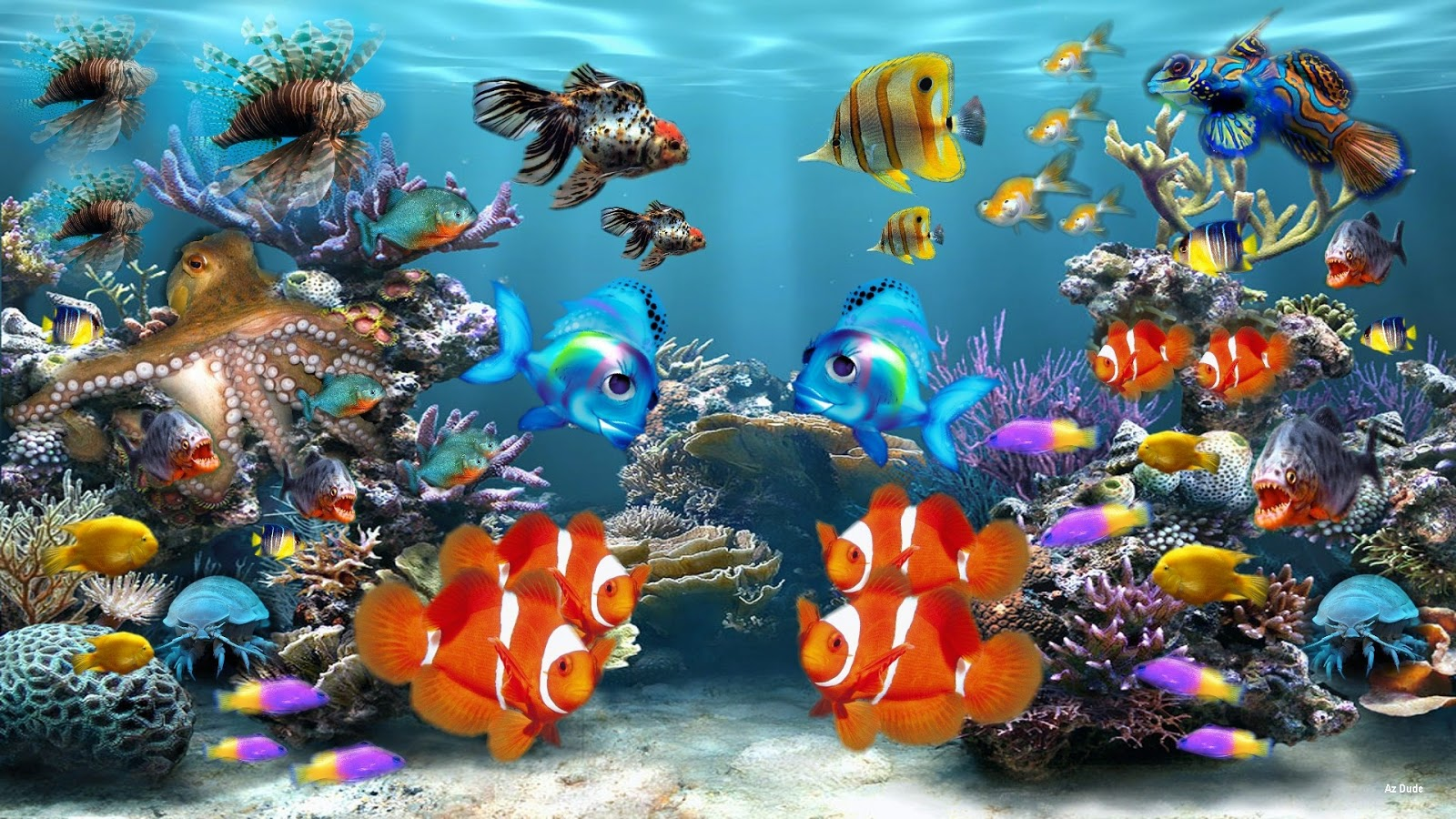 aquarium hd wallpaper aquarium wallpaper osabelhudosec. Black Bedroom Furniture Sets. Home Design Ideas
