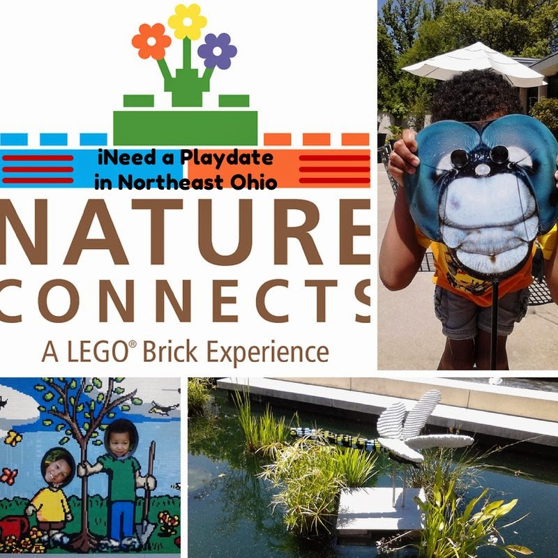 LEGOS and Nature: Making Connections at the Cleveland Botanical Garden