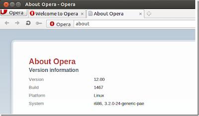 Ubuntu chrome sudo apt-get install