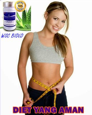 obat diet terkenal ampuh aman dan laris