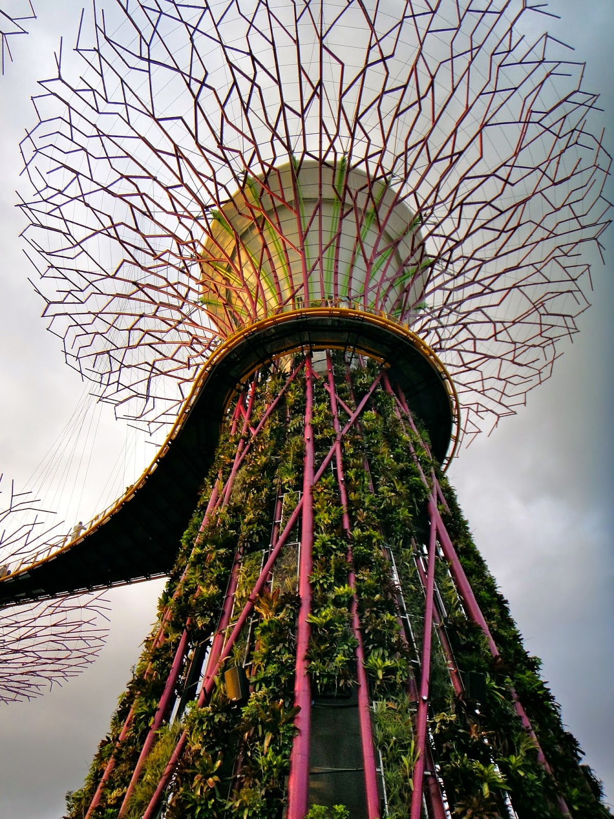 A Supertree at Gardens by the Bay Singapore
