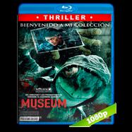 Museum (2016) BRRip 1080p Audio Latino-Japones