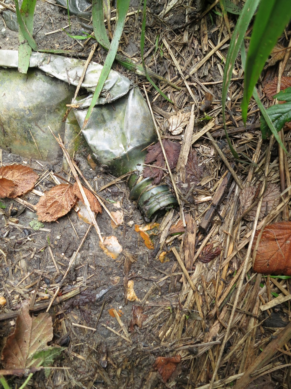 Plastic bottle squashed into muddy path - with dead and living leaves