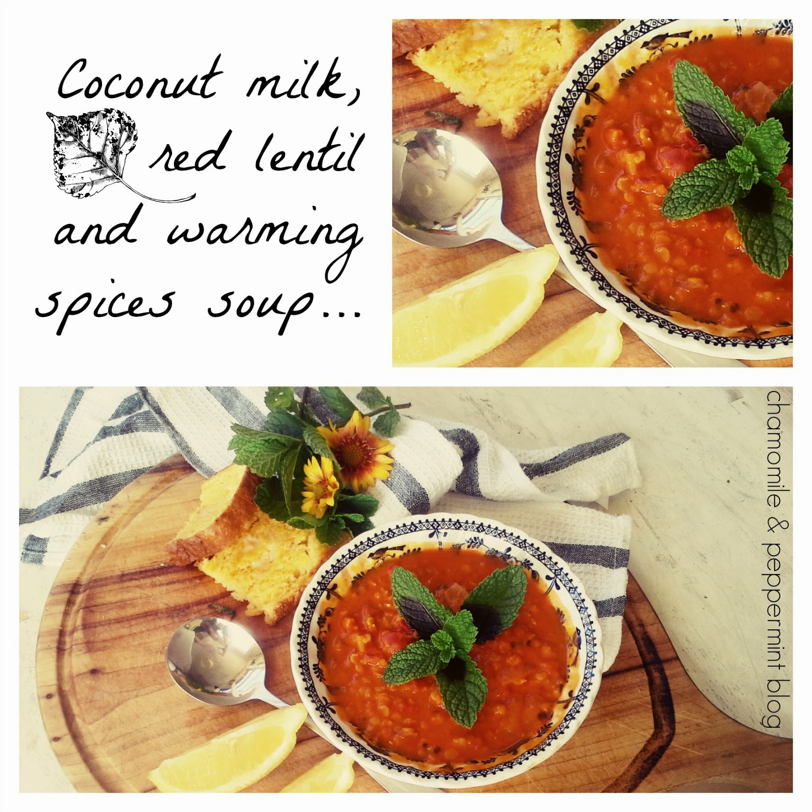 Chamomile and Peppermint Blog - Healthy coconut milk, red lentil and warming spices soup recipe