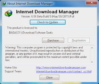 Picture showing Registered IDM 6.06 Beta Build 5